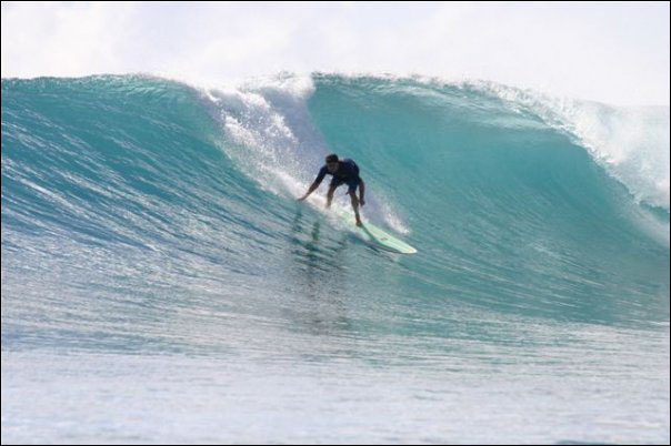 Dr. Morgan surfing in Indonesia